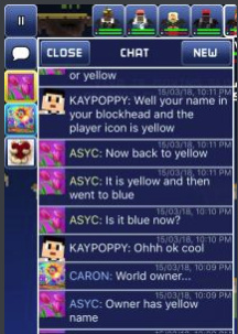 Owner's name is not yellow in chat - Bugs & Glitches - The